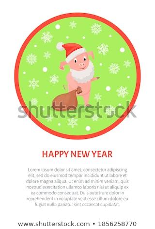 új év malacok mikulás jelmez ajándékok zsák Stock fotó © robuart