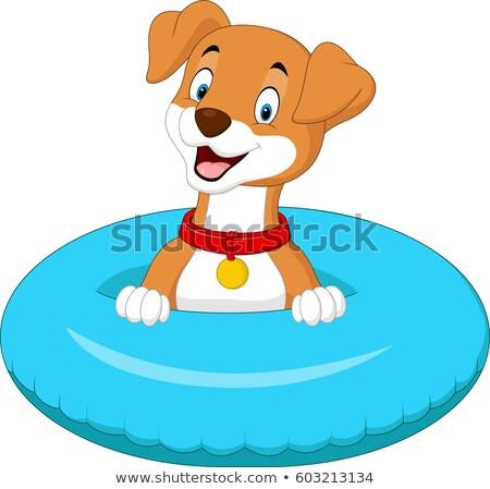 Dog Swim Pool Illustration Stock photo © lenm