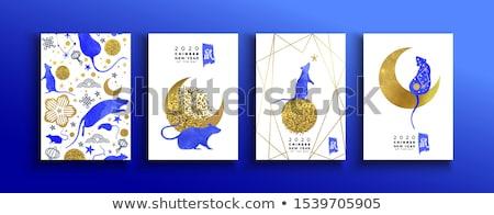 Китайский Новый год крыса золото блеск карт набор Сток-фото © cienpies