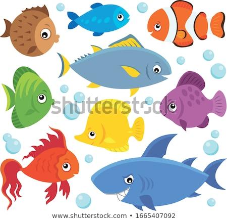 Stylized fishes theme set 4 Stock photo © clairev