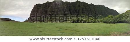 Vale 3d render ilustração natureza paisagem dentes Foto stock © orla