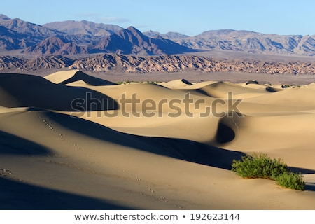 muerte · valle · arena · uno · regiones · tierra - foto stock © tobkatrina