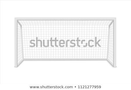 サッカー 純 詳細 緑の草 スポーツ ストックフォト © stevanovicigor