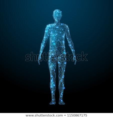 Ludzi ciało streszczenie cyfrowe projektu komputera Zdjęcia stock © 4designersart