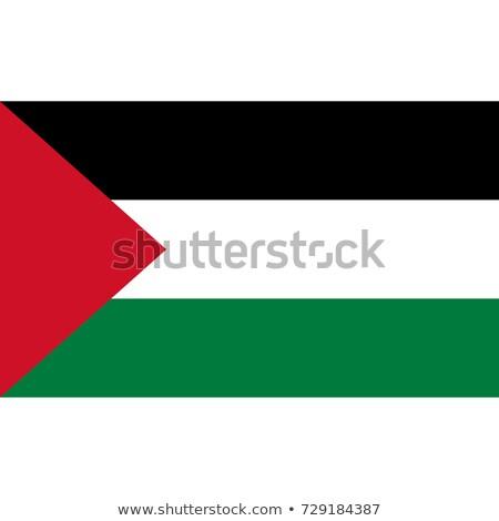 Flag of palestinian territory Stock photo © MikhailMishchenko