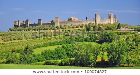 monteriggioni near siena tuscany italy stock photo © bertl123