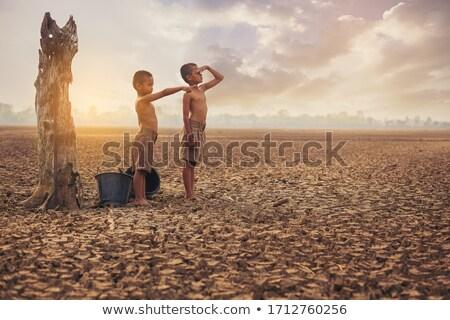 Droogte milieu gedroogd aarde gebarsten gebrek Stockfoto © Lightsource