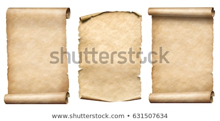 Vecchio scorrere carta mappa retro bianco Foto d'archivio © gladiolus
