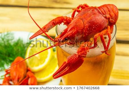 Cuit isolé blanche dîner shell Photo stock © OleksandrO