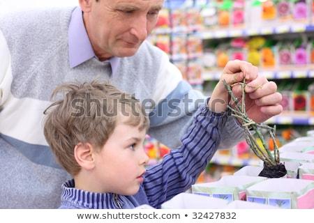 Idős férfi fiú bolt választ rózsa Stock fotó © Paha_L