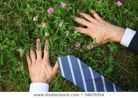 mans hands grass clover flowerstie stock photo © paha_l