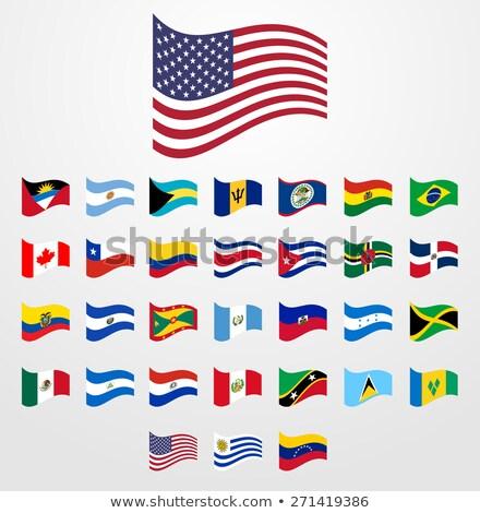 ストックフォト: ブラジル · ニカラグア · フラグ · パズル · 孤立した · 白