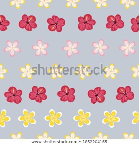 синий цветочный бесшовный гибискуса цветы лист Сток-фото © Winner