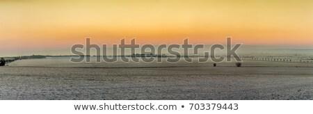 Manzaralı gündoğumu kar kapalı kış manzara Stok fotoğraf © meinzahn