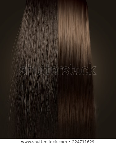 Brown Hair Frizzy and Straight Comparison Stock photo © albund