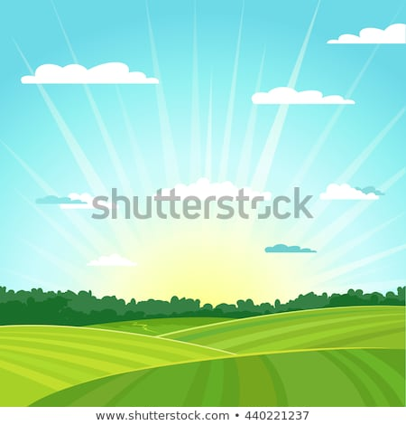 Scene with field and hills Stock photo © bluering