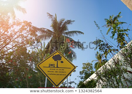 Sign of coconut fall in a park Stock photo © tang90246
