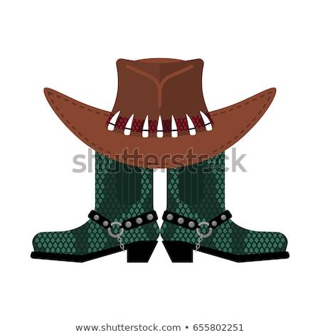 Chapeau crocodile peau bottes Cowboy Photo stock © popaukropa
