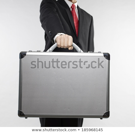 красивый · бизнесмен · костюм · Постоянный · портфель · белый - Сток-фото © deandrobot