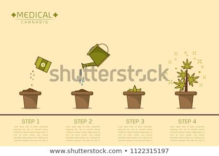 Cannabis Pot Flat Icon Stock photo © ahasoft