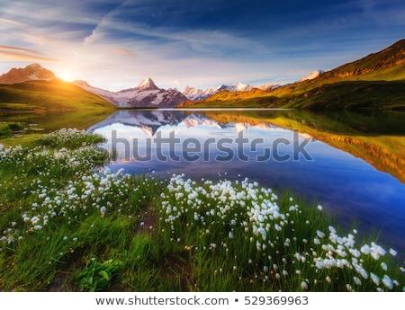 Ver acima la lago dramático Foto stock © Leonidtit