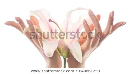 gyönyörű · nő · tart · liliom · izolált · fehér · meztelen - stock fotó © lightfieldstudios
