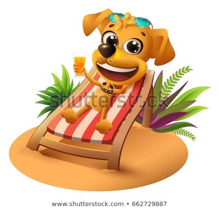 Summer beach vacation. Yellow dog lies on deckchair and holds orange juice Stock photo © orensila
