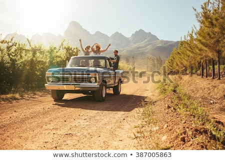 Young people traveling in pickup truck Stock photo © IS2