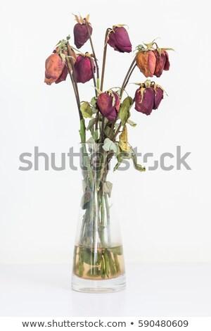 ваза цветы таблице природы украшение Blossom Сток-фото © IS2