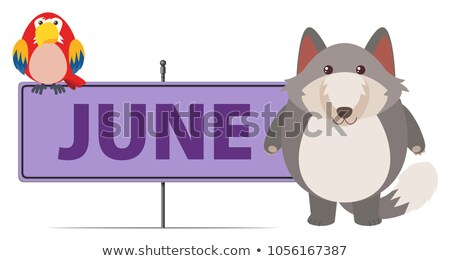 Gray fox and sign template for June Stock photo © bluering