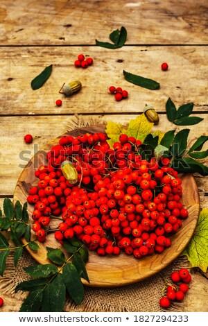 friss · nyers · organikus · bogyók · klasszikus · tábla - stock fotó © DenisMArt