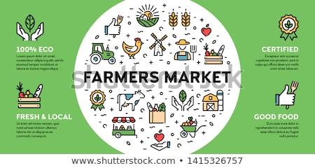fraîches · organique · légumes · bois · bureau - photo stock © dash