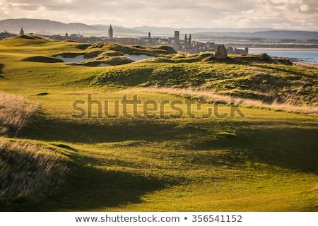 Widoku święty Szkocji plaży domu budynku Zdjęcia stock © lightpoet