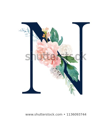 A letter N for navy Stock photo © colematt