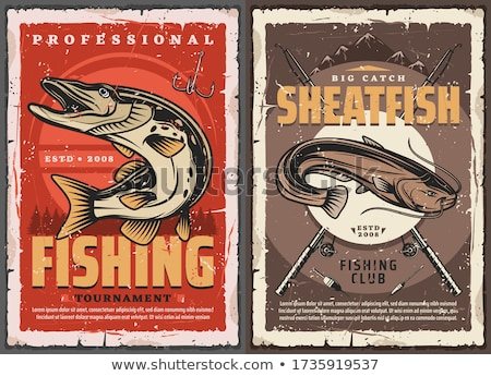 Zewnątrz działalność plakat połowów zestaw posiedzenia Zdjęcia stock © robuart