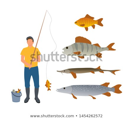 Set of Various Water Inhabitants and Fisherman Stock photo © robuart