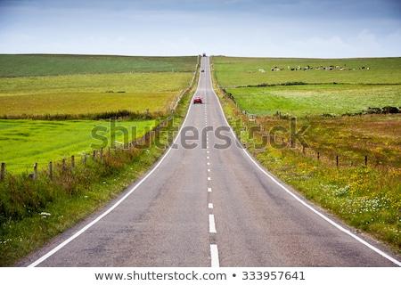 Curva carretera océano ilustración paisaje calle Foto stock © colematt