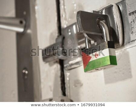 House with flag of western sahara Stock photo © MikhailMishchenko