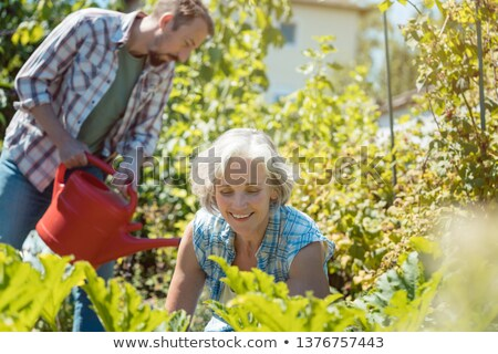 senior woman and her son working in the garden stock photo © kzenon