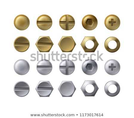 Realistic Metal Head Of Screw And Bolt Set Vector Сток-фото © pikepicture