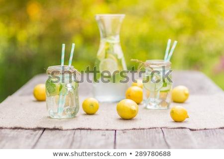 Taze yaz narenciye limonata limon kireç Stok fotoğraf © karandaev