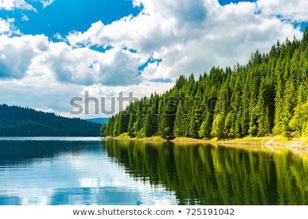 Alpine montagnes sapin arbres Autriche alpes Photo stock © AndreyPopov