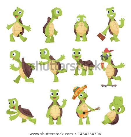 Schildpad dier karakter cartoon illustratie gelukkig Stockfoto © izakowski