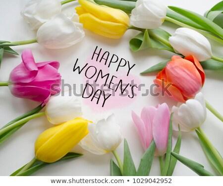 Mejor internacional día de la mujer feliz mujeres Foto stock © robuart