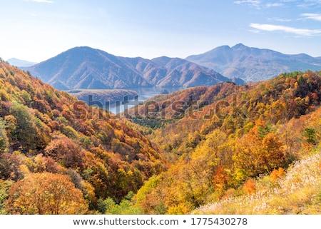 Nakatsugawa gorge from view point Azuma lake line Stock photo © vichie81