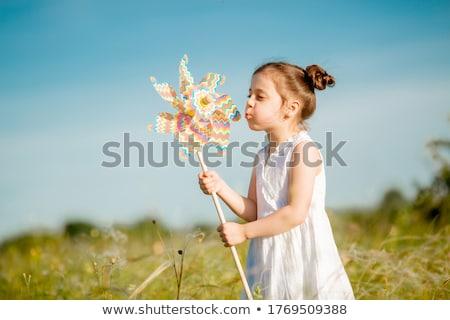 Cute pequeño nino molino de viento infancia primavera Foto stock © galitskaya