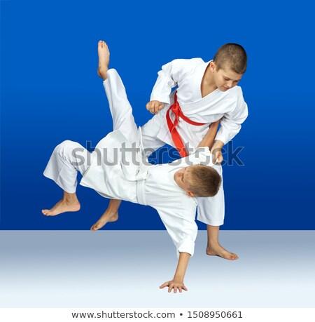 Twee opleiding judo kinderen gezondheid veiligheid Stockfoto © Andreyfire