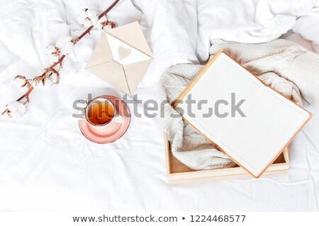 Pamut ág kötött kockás szürke felső Stock fotó © furmanphoto
