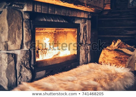 Cozy fireplace at home Stock photo © jossdiim