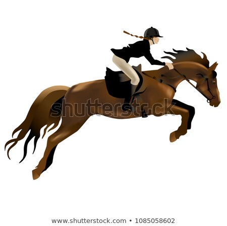 Rider on Horse Show Jumping Stadium Jumping or Open Jumping Retro Black and White Stock photo © patrimonio